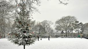 Shelley Park by Peteris Vorobjovs