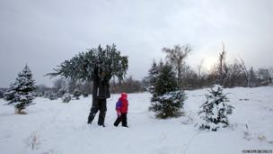 Tony Baker carries a Christmas tree he has cut with his daughter Mesa at the Rum River Tree Farm in Anoka, Minnesota