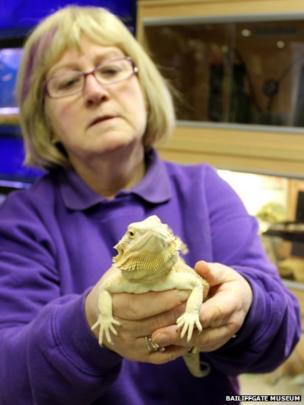 Brenda Angus with a bearded dragon