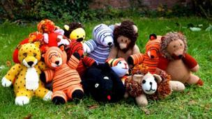 """Paignton Zoo's """"twelve big cats"""""""