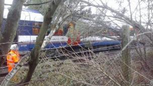 Tree on a train at Lambourne Gardens, Earley