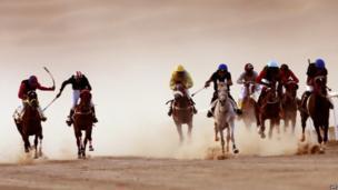 Jockeys compete in a race for purebred Arab horses during the Liwa 2014 Moreeb Dune Festival in Abu Dhabi