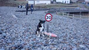Stone on Newgale beach in Pembrokeshire