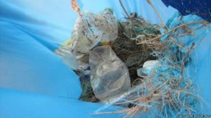 Plastic bottles inside one of the bags