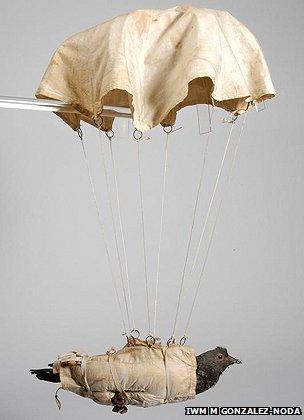 Pigeon parachute