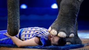 Joy Gartner performs with an elephant