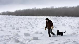 A woman walks her dog in a field covered with snow rollers