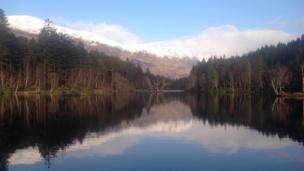 Glencoe Lochan, a tract of forest located just north of Glencoe village