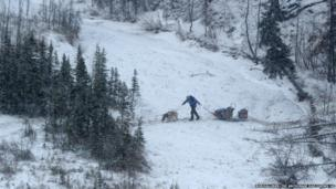 A musher and two dogs pull the sled across a small stream