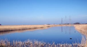 Blue sky at Newport Wetlands, taken by Mark Condick