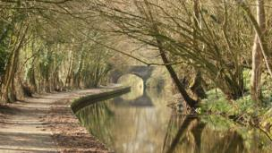 Helen Stephens from Caersws said she took this photo on a sunny walk down the Montgomeryshire Canal between Welshpool and Berriew