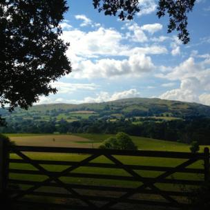 The strikingly beautiful fields of Betws-yn-Rhos. Photo taken by Angela Houghton of Chicago, USA.