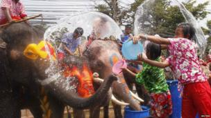 Children splash elephants with water