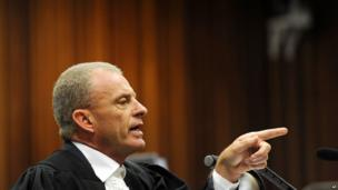State prosecutor Gerrie Nel during cross-questioning of Oscar Pistorius, in court in Pretoria on 10 April 2014.