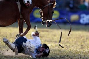 A gaucho is unseated by a wild horse