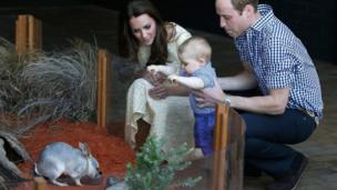...And Prince George made friends with a George the Bilby. The furry creature is a cross between a rat and a rabbit. The royal tour will finish in the Australian capital, Canberra, on 25 April.
