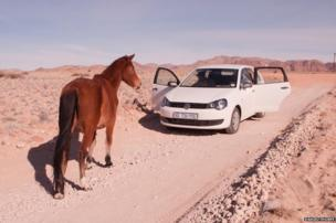 Horse on the road in Namibia