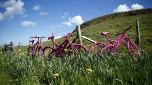 Pink bicycles.