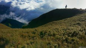 Near Mount Pulag