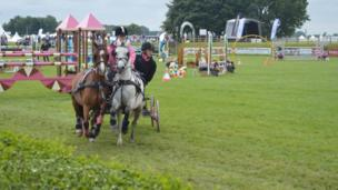 Competitor taking part in the British Scurry Driving Championship