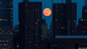 A large orange coloured moon is captured between two skyscrapers.
