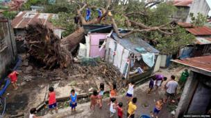 People gather around a tree that has crushed a number of homes in in Rosario, Cavite city, south of Manila