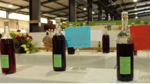 Gwin coch cartref gorau'r Sioe// The winning home made red wines