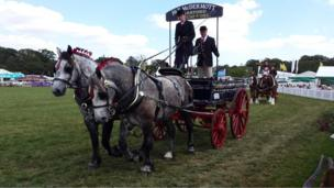 Vintage horse-drawn commercial vehicles at the New Forest Show