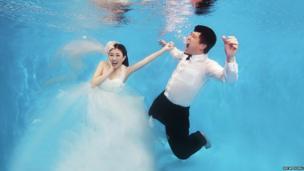 Da Bing & Yoyo photographed underwater