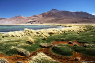 Laguna Santa Rosa in the stunning Nevado Tres Cruces National Park in the Atacama desert in Chile.