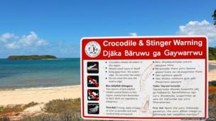 Crocs and stingers