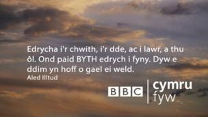 Edrycha i'r chwith, i'r dde, ac i lawr, a thu ôl. Ond paid BYTH edrych i fyny. Dyw e ddim yn hoff o gael ei weld