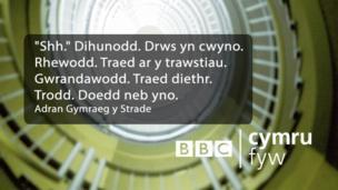 """""""Shh."""" Dihunodd. Drws yn cwyno. Rhewodd. Traed ar y trawstiau. Gwrandawodd. Traed diethr. Trodd. Doedd neb yno."""