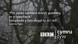 """""""Fi'n casáu cerdded drwy'r goedwig yn y tywyllwch."""""""