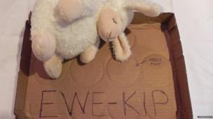"""Ewe Kip"" by Drunken Shepherd"