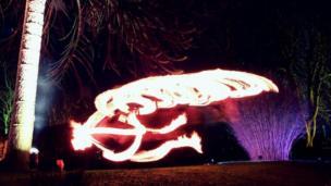 Light display in Botanic Gardens