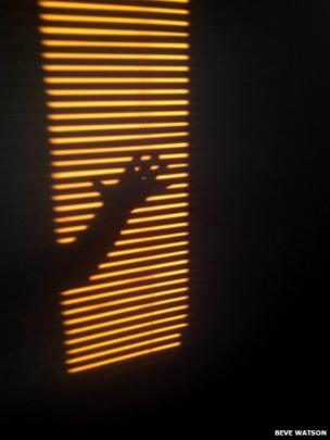 Hand on blinds