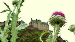 Edinburgh Castle and thistles