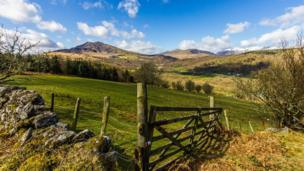 A view of Moel Siabod and the Carneddau range taken from Gwydyr Forest, Betws y Coed by Stephen Morris of St Asaph