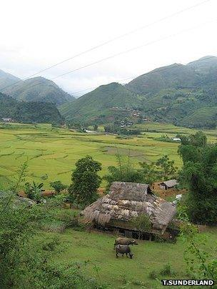 Forest and agriculture mosaic landscape, Vietnam (Image: Terry Sunderland)
