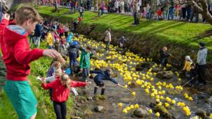 Dollar duck race