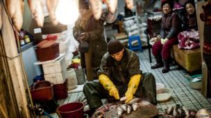 Preparing fish at one of Busan's Deokpo fish markets