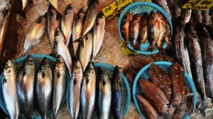 Fresh seafood at a market stall