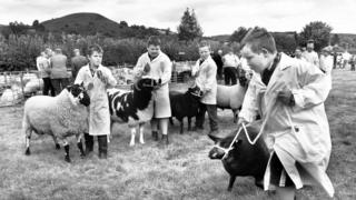Children show off their prize sheep at the Erwood and District show, Powys