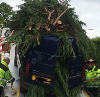 Tree on van being towed away