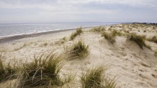 The beach and sand dunes in Walberswick, Suffolk.
