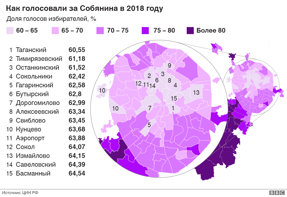 Как голосовали за Собянина