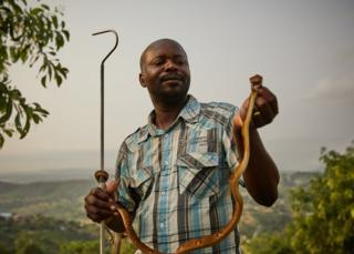 Francois Nsingi, a technician at the Kinshasa Centre of Anti-Venom