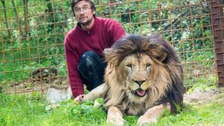 Prasek e o leão dentro da jaula