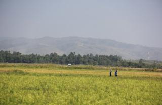 Picture of Buru Island